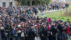 NATO będzie zawracać migrantów do Turcji - miniaturka
