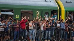 Duńczycy nie patyczkują się z uchodźcami! - miniaturka