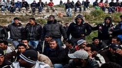 Nielegalni imigranci rozpływają się w europejskim powietrzu - miniaturka
