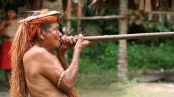 W Amazonii duszpasterstwo ma być ,,kreatywne''. Co to znaczy?... - miniaturka