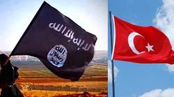 Pentagon: Turcja utrudnia walkę z Państwem Islamskim - miniaturka