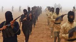 Ekonomia terroru, czyli kto z UE finansuje Państwo Islamskie? - miniaturka
