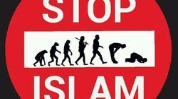 Łukasz Adamski dla Frondy o tym co może zatrzymać islam! - miniaturka