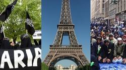 Francja coraz bardziej czarnoskóra i islamska - miniaturka