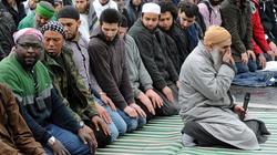 Jak uczynić z islamu religię pokoju. Oto pomysł! - miniaturka