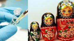Są ruskie pierogi, jest ruskie in vitro... - miniaturka