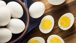 Jaja to samo zdrowie: 50 lat kłamstwa jajczarskiego - miniaturka