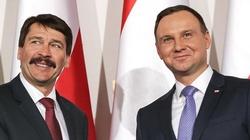 Prezydent Andrzej Duda: My i Węgrzy niesiemy Europie wartości  - miniaturka