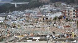 Trzęsienie ziemi w Japonii. Co z elektrownią atomową? - miniaturka