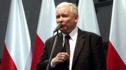 'Kaczyński wygrywa z opozycją 10:1' - miniaturka