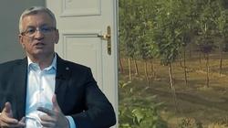 14 drzew za ponad 500 tys. złotych. Tak ,,gospodaruje'' Poznań - miniaturka