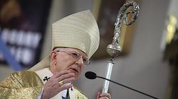 Abp Marek Jędraszewski: Chrześcijanie budują nowy, wspaniały świat, cywilizację miłości - miniaturka