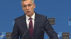 Szef NATO: Rosja przekroczyła granicę - miniaturka
