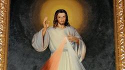 Ciebie Boga wysławiamy - miniaturka