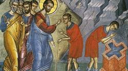 """""""Nie dawajcie psom tego, co święte""""-Trzy rady Jezusa - miniaturka"""