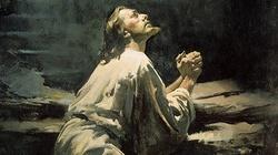 Mocny, dogłębny wykład o woli Bożej w życiu człowieka - warto posłuchać... i PRZEMYŚLEĆ - miniaturka