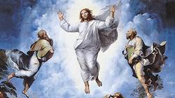 Ks. dr Mirosław Tykfer: Czy istnieją dowody na zmartwychwstanie Chrystusa? - miniaturka