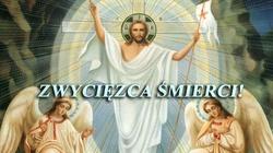 Szturm modlitewny za Małgosię. Ma dopiero 20 lat, cierpi na nowotwór. Jezusie, zwycięzco śmierci, TY MOŻESZ WSZYSTKO! - miniaturka