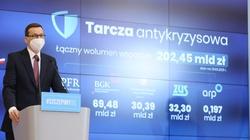 Aż 30 mld złotych - kolejna tarcza dla polskich przedsiębiorstw - miniaturka