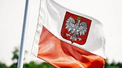 Spis powszechny w Czechach. Polonia zachęca do deklarowania polskiej narodowości  - miniaturka