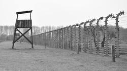 Jest Europejski Nakaz Aresztowania dla byłej strażniczki obozu KL Flossenbürg - miniaturka