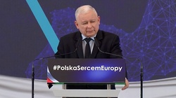 Jarosław Kaczyński: Nie zapłacimy Żydom. To oznaczałoby, że przyznajemy się do sojuszu z Hitlerem - miniaturka