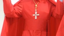 Franciszek ogłosił 13 nowych kardynałów. Co z Polską? - miniaturka