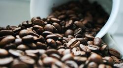 Jaką kawę do ekspresu kupić? - miniaturka