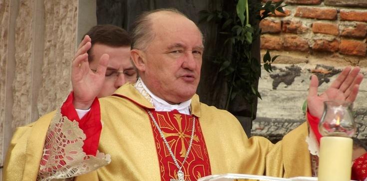 Zarzuty wobec kardynała Nycza dot. ukrywana pedofilów. Archidiecezja zabiera głos - zdjęcie