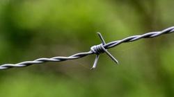Były strażnik niemieckiego obozu Sttuthof skazany - miniaturka