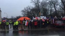 Setki tysięcy KOD-owców przeciw krwawemu reżimowi PiS - miniaturka