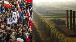 Sekta KOD chce wysyłać PiS jak Żydów do Auschwitz! - miniaturka