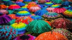 'Kolorowy Wtorek'- piękna odpowiedź na Czarny Protest! - miniaturka