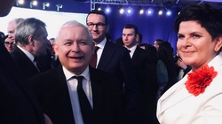 MOCNA prognoza na eurowybory!!! PiS wygrywa i umacnia pozycję - miniaturka