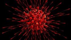 Brawo Polska! Warszawscy naukowcy opracowali grupowe testy na koronawirusa  - miniaturka