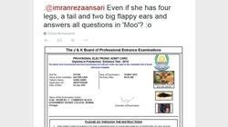 Indie: Do egzaminu na studia ma przystąpić.. krowa - miniaturka