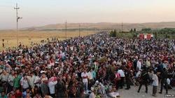 Kurd z Iraku szczerze: Oni jadą do Niemiec dla pieniędzy - miniaturka