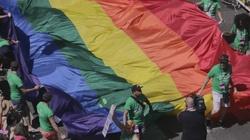 MSZ odpowiada na list ambasadorów. Chodzi o LGBT - miniaturka