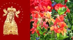 Dziś święto Najświętsza Maryi Panny Licheńskiej - miniaturka
