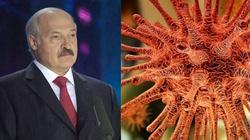 Białoruś: koronawirus podkopie władzę Łukaszenki? - miniaturka