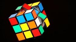 Seligman: Kontrowersje wokół ilorazu inteligencji - miniaturka