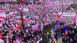 Policja: Manifestacja PiS dwa razy liczniejsza niż KOD-u - miniaturka