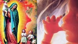 Modlitwa do Matki Bożej za dzieci nienarodzone oraz ofiary aborcji - miniaturka
