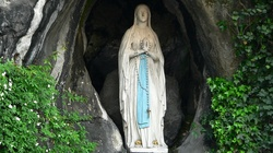 To dzieje się naprawdę! Matka Boża z Lourdes uzdrawia! - miniaturka