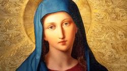 Cudowne ożywienie obrazów w Rzymie - miniaturka