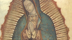 Matko Boża z Guadelupe, módl się za nami! - miniaturka