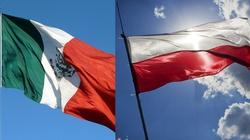 Meksyk może być żyzną ziemią dla polskiej gospodarki - miniaturka