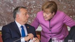 Sondaż: Niemcom pod wodzą Merkel najbardziej ufają... Węgrzy. Jak wypadli Polacy? - miniaturka