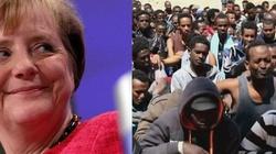Bałkany ratują Niemcy i Europę przed imigrantami - miniaturka