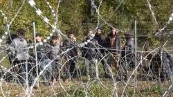 [Wideo] MON ujawnia wypowiedzi migrantów: Reżim Łukaszenki zmusza ich do przekraczania polskiej granicy i nie pozwala wrócić do domów - miniaturka